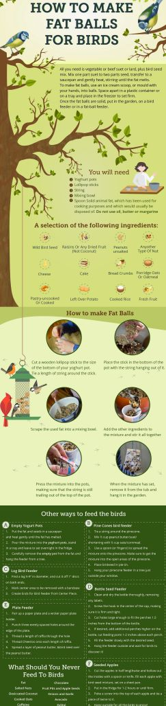 How To Make Fat Balls For Birds min 002 pic 2