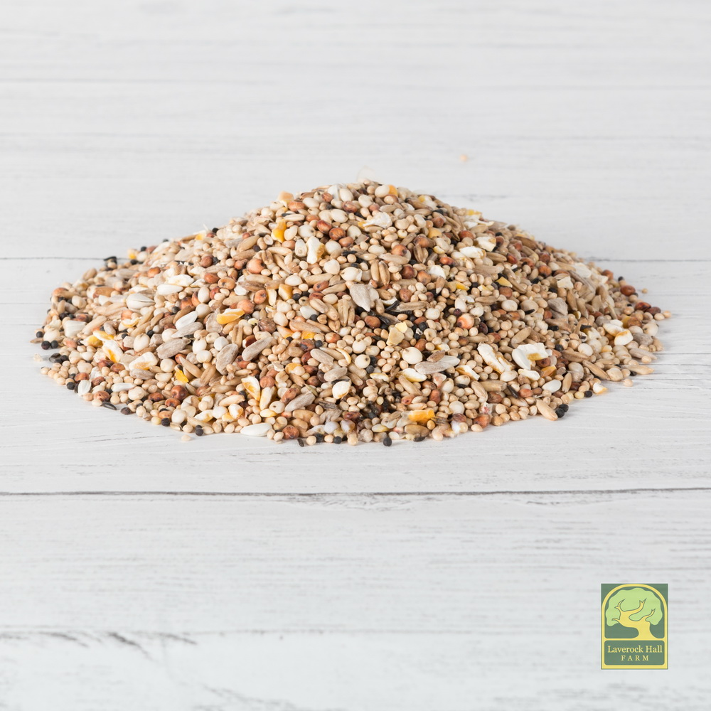 Laverock Bird food - No waste WBF with aniseed-1
