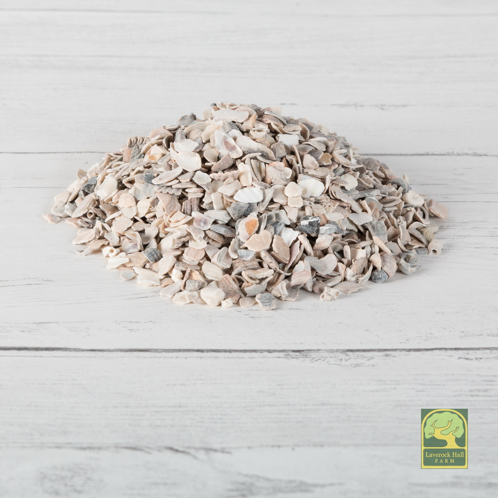 Laverock Bird food - Oyster shell-1