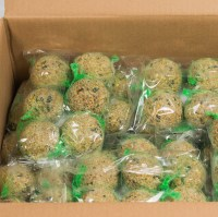GB Seeds Fatballs 25 X 6 1000x1000