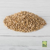 Laverock Bird food - Barley-1